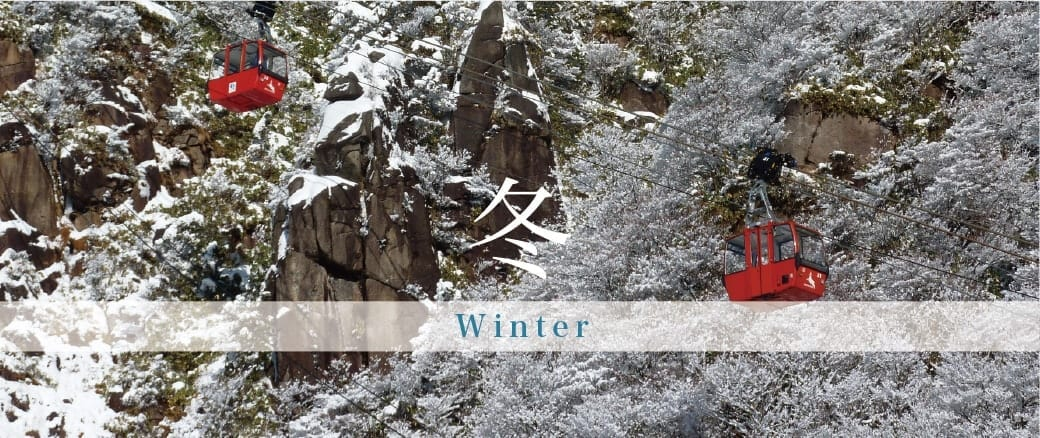 The Four Seasons of Mt. Gozaisho: Winter