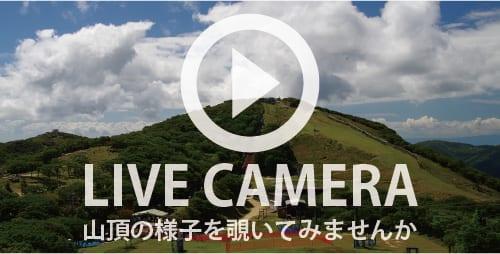 山頂ライブカメラ