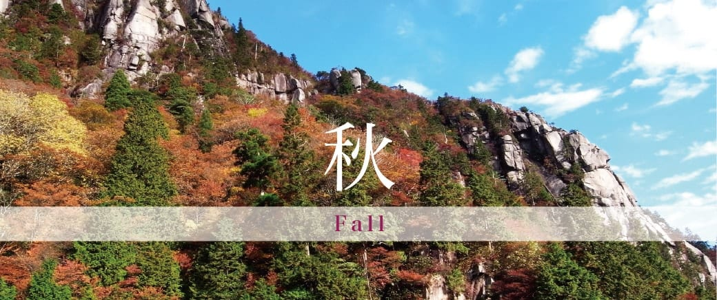 The Four Seasons of Mt. Gozaisho: Fall