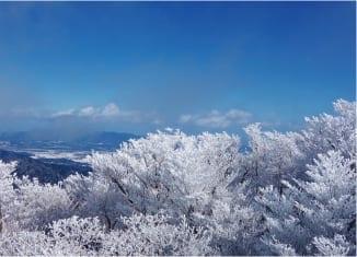 The Four Seasons of Mt  Gozaisho: Winter | Gozaisho Ropeway
